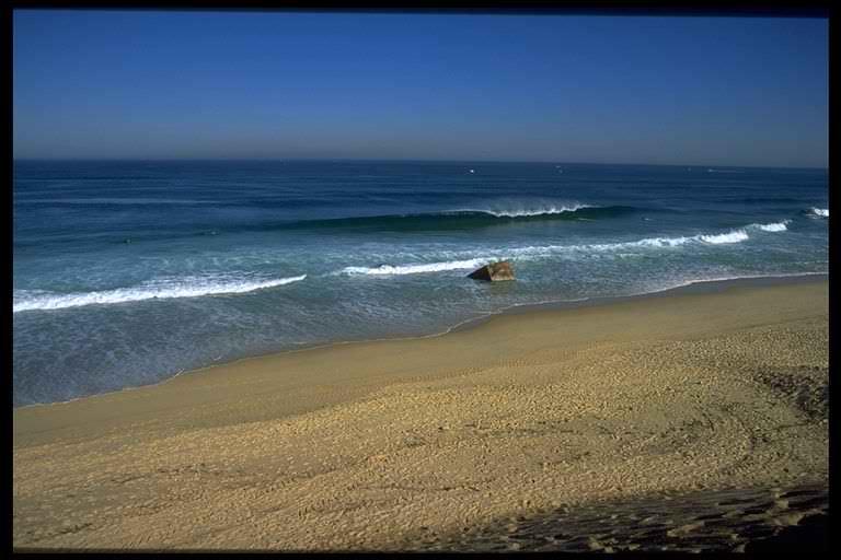 photo de surf 858